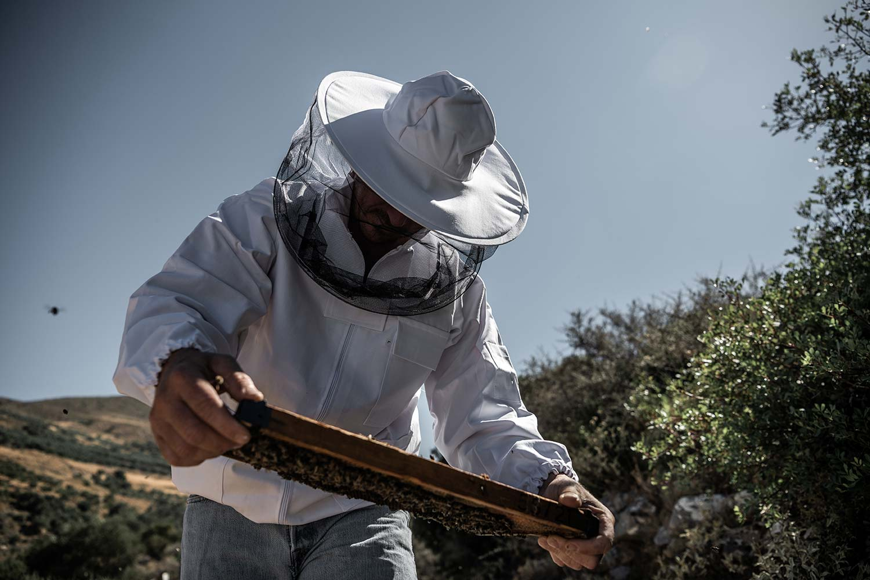 man-honeycomb